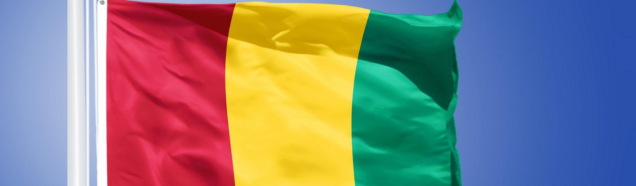 Flag of Guinea flying against a blue sky